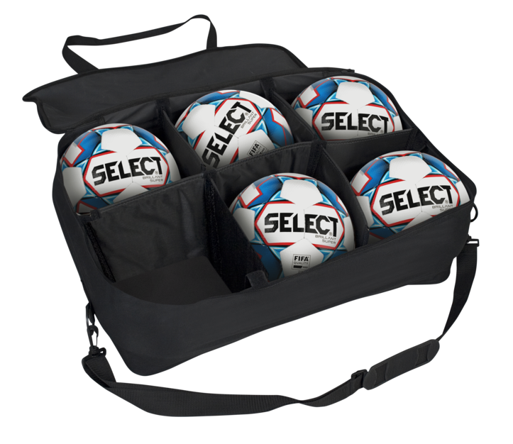 Pro Level Carry Ball Bag