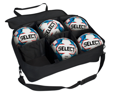 Multi Purpose Ball Bag